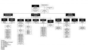 CartaOrganisasi